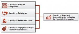 functional_capacities1