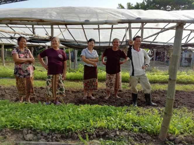CDAIS – Capacity Development for Agricultural Innovation