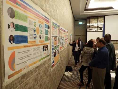 Advances, experiences and remaining challenges from each of the pilot countries were explained to TAP partners using posters and presentations.